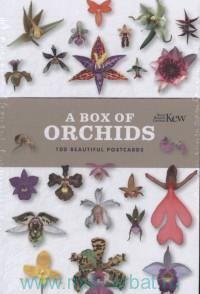 A Box of Orchids : 100 Beautiful Postcards