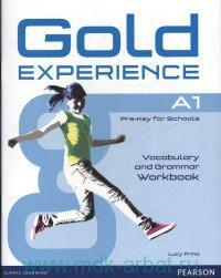 Gold Experience A1 : Pre-Key for Schools Vocabulary and Grammar Workbook