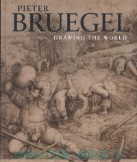 Pieter Bruegel : Drawing the World