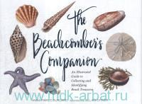 The Beachcomber's Companion : An Illustrated Guide to Collecting and Indentifying Beach Treasures