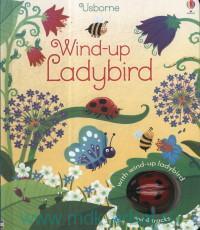 Usborne Wind-Up Ladybird