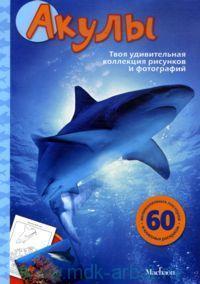 Акулы. Твоя удивительная коллекция рисунков и фотографий