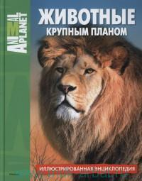 Животные крупным планом : иллюстрированная энциклопедия