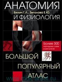 Анатомия и физиология : большой популярный атлас : более 300 наглядных схем