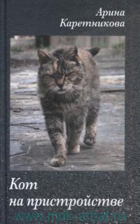 Кот на пристройстве