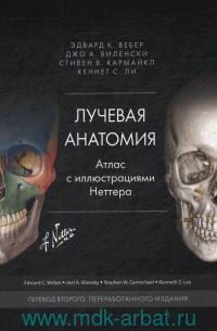 Лучевая анатомия : атлас с иллюстрациями Неттера