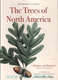 The Trees of North America : Michaux and Redoute's American Masterpice