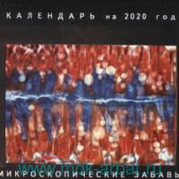 Микроскопические забавы : календарь на 2020 год