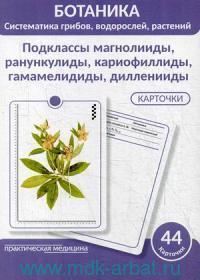 Ботаника. Систематика грибов, водорослей, растений : гербарные карточки. Блок 2. Подклассы магнолииды, ранункулиды, кариофиллиды, гамамелидиды, дилленииды : учебное пособие : 44 карточки