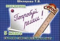 """Математика : 5-й класс : сборник самостоятельных работ """"Попробуй реши!"""" : пособие для детей 11-12 лет : издание для дополнительного образования (ФГОС)"""