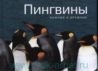 Пингвины : важные и дружные
