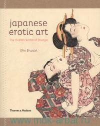 Japanese Erotic Art : The Hidden World of Shunga