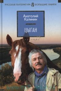 Цыган : роман