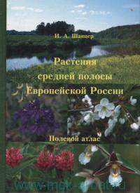 Растения средней полосы Европейской России. Полевой атлас