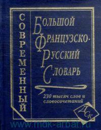Большой французско-русский словарь : 230 000 слов и словосочетаний