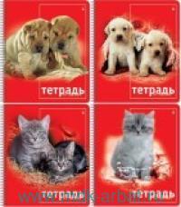 Тетрадь А5 80 листов клетка «Кошки. Собаки» на спирали : Арт.7-80-129Д (ТМ Альт)