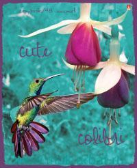 Тетрадь А5 48 листов клетка «Райские птицы» иридиум, скрепка : Арт.7-48-008 (ТМ Альт)