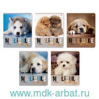 Тетрадь А5 48 листов, клетка «Сладкие щенята» скрепка : Арт.7-48-607 (ТМ Альт)