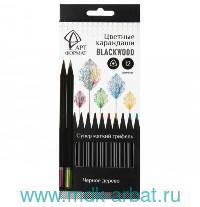 Карандаши 12 цветов «Blackwood» трехгранные, черное дерево, картонная коробка : Арт.AF03-051-12 (ТМ АРТформат)