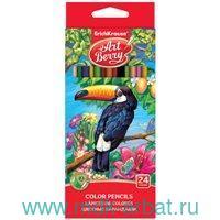 Карандаши 24 цветов «Art berry» трехгранные : Арт.ЕК 32480 (ТМ ArtBerry)