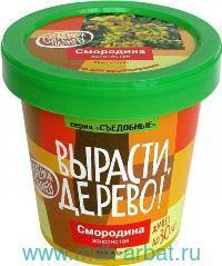 Набор для выращивания «Смородина золотистая» : Арт.zk-089 (ТМ Вырасти дерево)