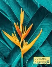 Тетрадь со cменным блоком, 96 листов, клетка, «Тропический цветок» : (ТМ Эксмо)