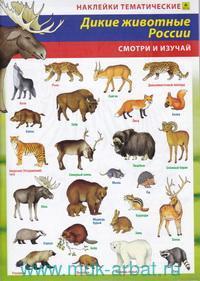Дикие животные России : наклейки тематические : смотри и изучай