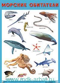 Морские обитатели : наглядное пособие