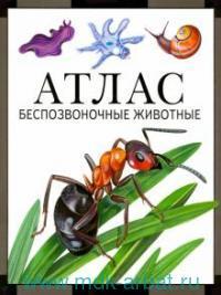 Беспозвоночные животные : атлас