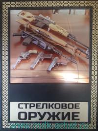 Стрелковое оружие : иллюстрированная энциклопедия