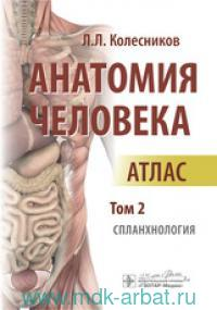 Анатомия человека : атлас. В 3 т. Т.2. Спланхнология