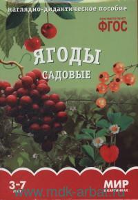 Ягоды садовые : наглядно-дидактическое пособие : 3-7 лет (ФГОС)