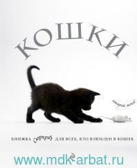 Кошки : книжка-сюрприз для всех, кто влюблен в кошек