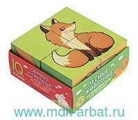 Лесные животные : развивающая игра для малышей : 2+