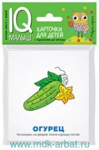 Загадки : карточки для детей с подсказками для взрослых : для детей самого раннего возраста