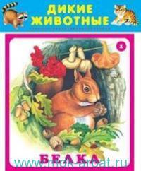 Дикие животные : набор карточек