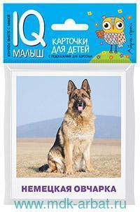 Породы собак : карточки для детей с подсказками для взрослых