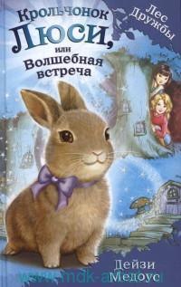Крольчонок Люси, или Волшебная встреча : повесть
