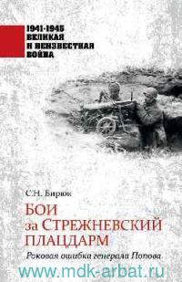 Бои за Стрежневский плацдарм : Роковая ошибка генерала Попова