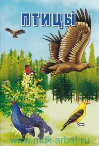 Птицы : интересные факты о каждой птице : карточки : 3+