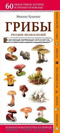 Грибы русских лесов и полей : наглядный карманный определитель