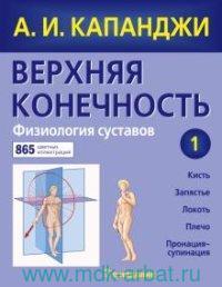 Верхняя конечность. Физиология суставов 1 : схемы биомеханики человека с комментариями