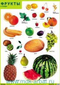 Фрукты и ягоды : плакат