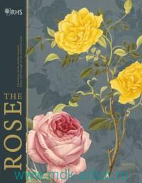 The Rose : The History of the World`s Favourite Flower Told Through 40 Extraordinary Roses