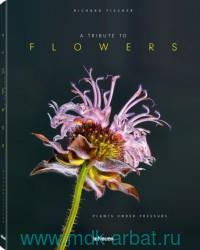 A Tribute to Flowers : Plants Under Pressure