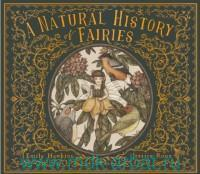 A Natural History of Fairies : From the Notebook of Professor Elsie Arbour