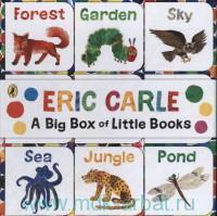 A Big Box of Little Books
