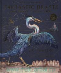 Fantastic Beasts and Where to Find Them : Newt Scamander
