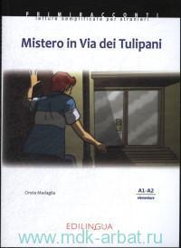 Mistero in Via dei Tulipani :  A1-A2 elementare