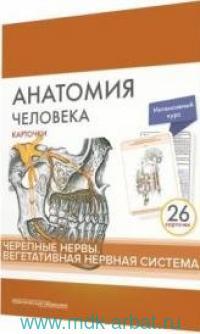 Анатомия человека : 26 карточек. Черепные нервы. Вегетативная нервная система